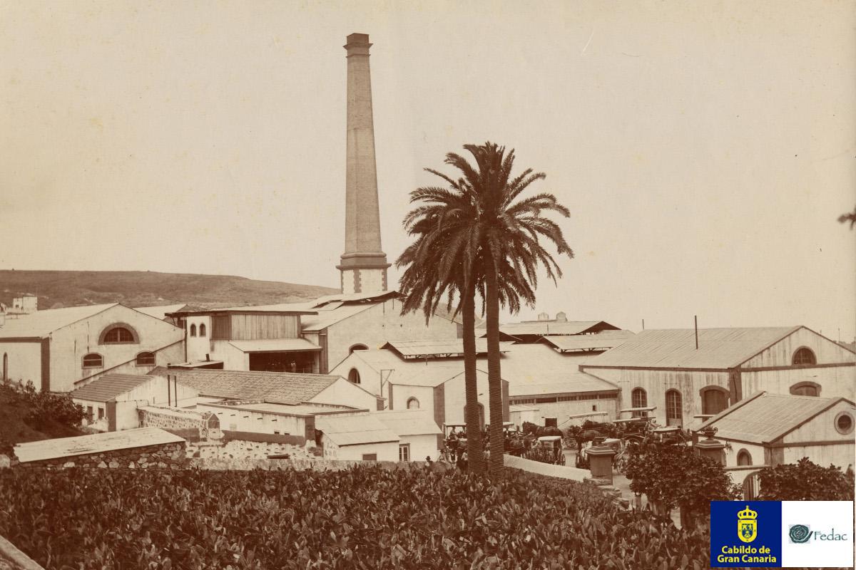 Fábrica de ron, Arucas, 1910